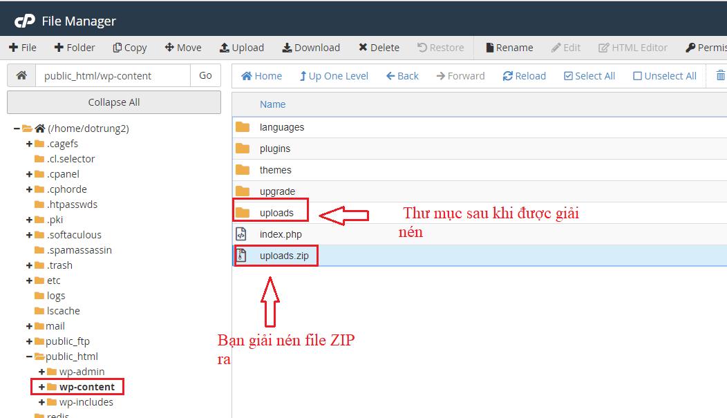 repair-website-wordpress-malware-attack