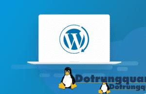 Hạ cấp phiên bản wordpress như thế nào