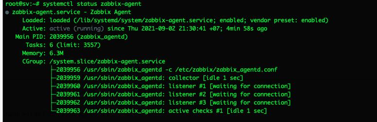 Hướng dẫn cài đặt Zabbix Agent trên Ubuntu 20.04