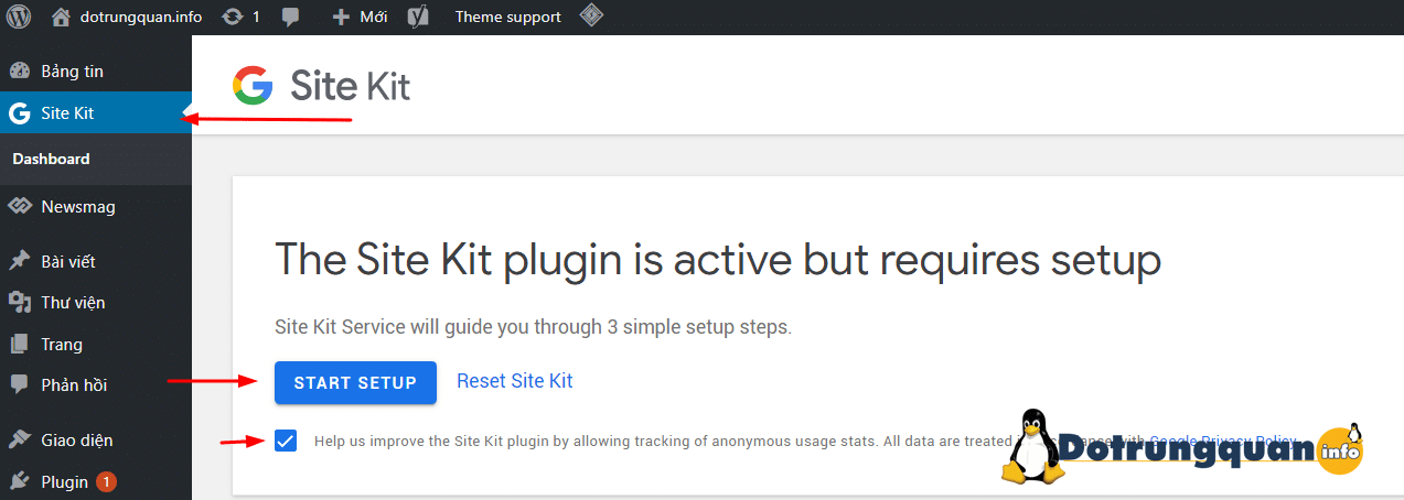 The Site Kit plugin is active but requires setup